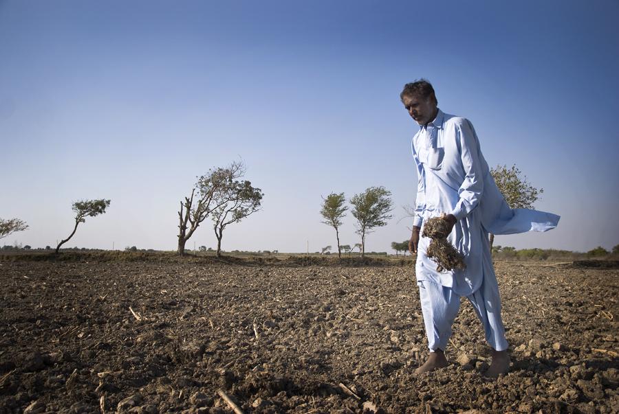 Minst tva ars kris for jordbruket i pakistan
